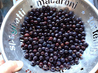 Washing the sloes
